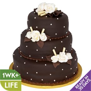 Sainsburys Frozen Chocolate Cake