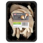 Waitrose oyster mushrooms - 150g